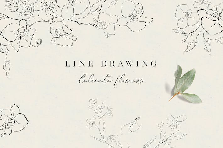 Thumbnail for Line Drawing Delicate Flowers