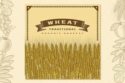 Tarjeta de cosecha de trigo Retro