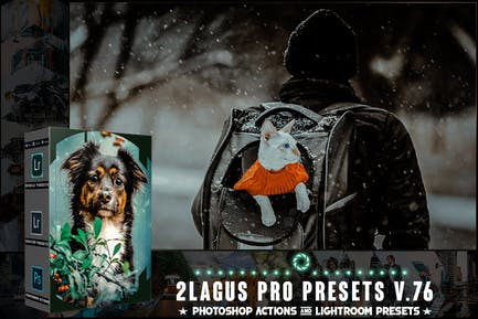 Пресеты PRO - V 76 - Photoshop и Lightroom