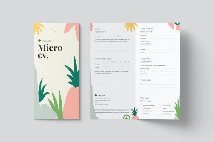 Micro CV
