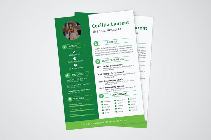 Thumbnail for CV Resume Professional Template Vol. 10