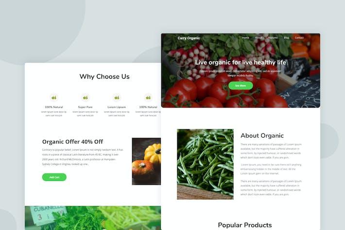Thumbnail for Organic - Email Newsletter