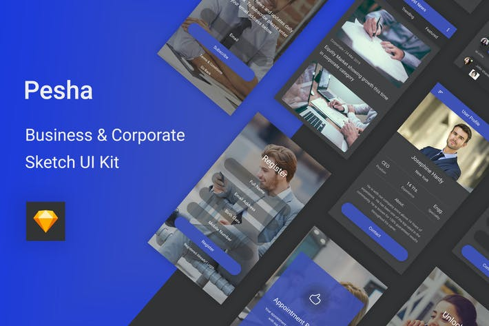 Thumbnail for Pesha - Business & Corporate Sketch UI Kit