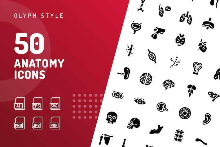 Anatomie-Glyphe-SIcons