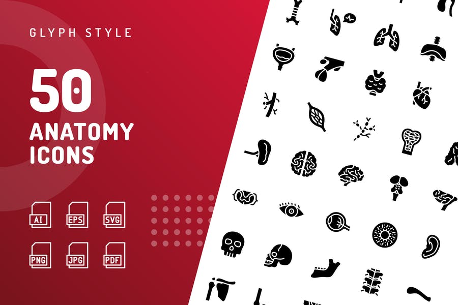 Anatomy Glyph Icons