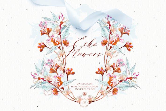 Echo Flowers - ensemble de clipart floral aquarelle
