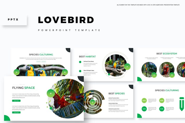 Love Bird - Powerpoint Template