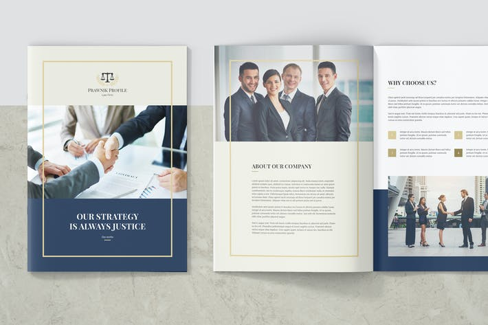 Thumbnail for Prawnik – Law Firm Company Profile
