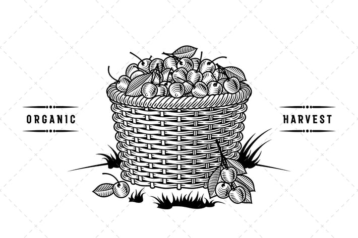 Thumbnail for Retro Basket Of Cherries Black And White