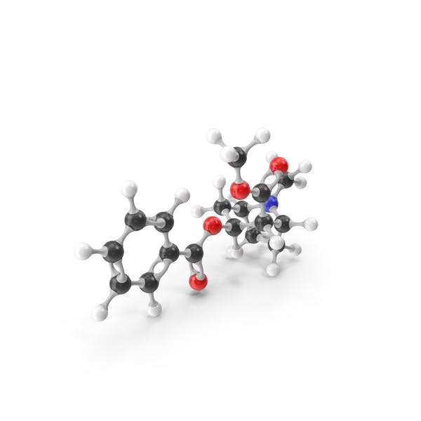 Cocaine Molecular Model