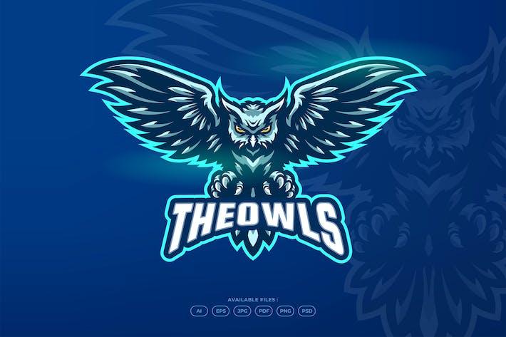Thumbnail for Bird Owl Fly