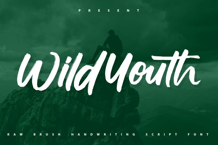 Wildyouth | Brush Handwriting Script Font