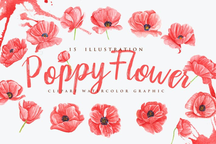 Thumbnail for 15 Watercolor Poppy Flower Illustration