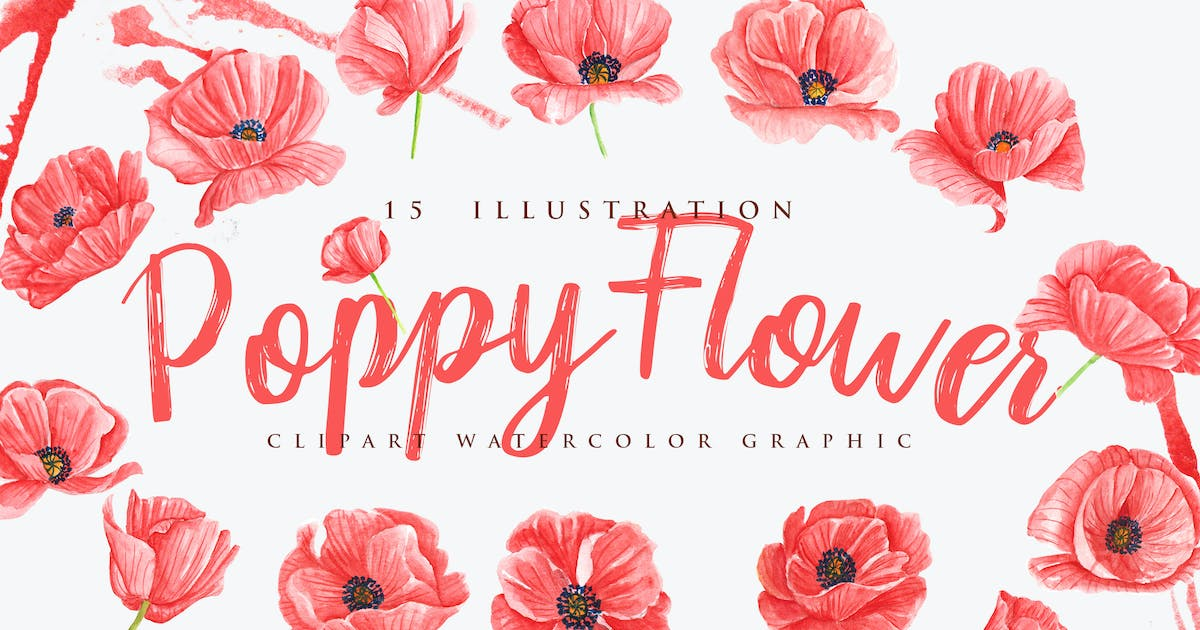 Download 15 Watercolor Poppy Flower Illustration by aqrstudio