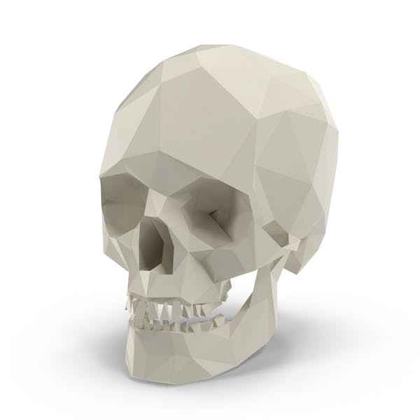 Thumbnail for Low Poly Skull
