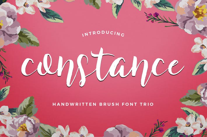 Cover Image For Constance Brush Font Trio