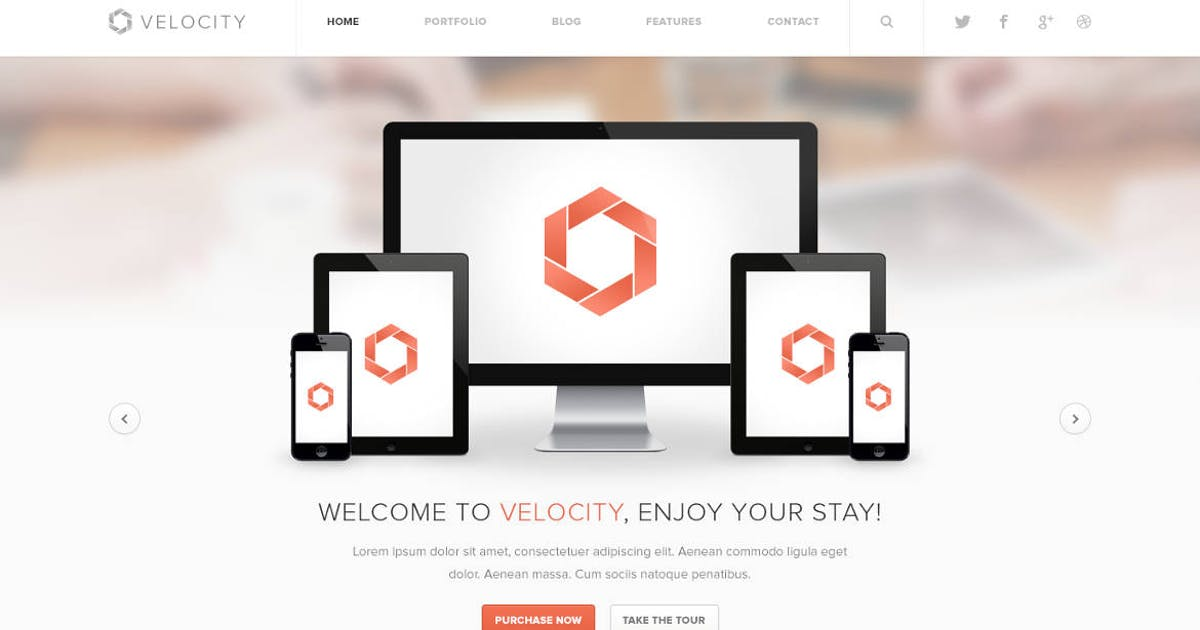 Download Velocity - Feature Rich Drupal Theme by symphonythemes