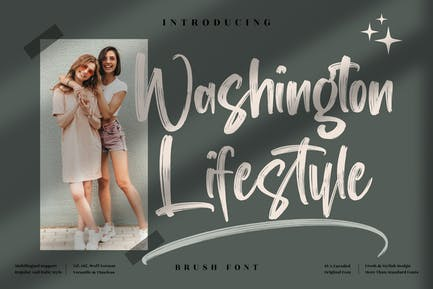 Washington Lifestyle Brush Font LS