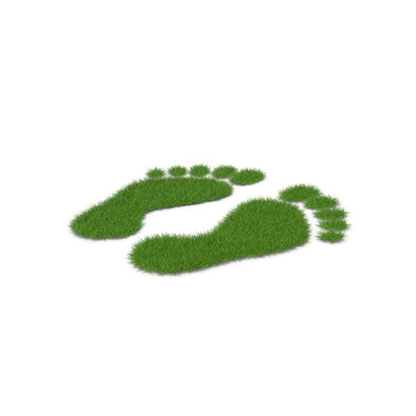 Grass Footprints