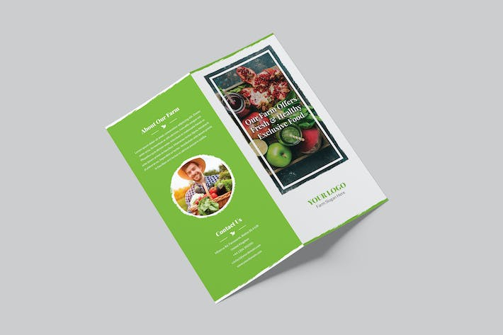 Thumbnail for Brochure – Organic Food Bi-Fold DL