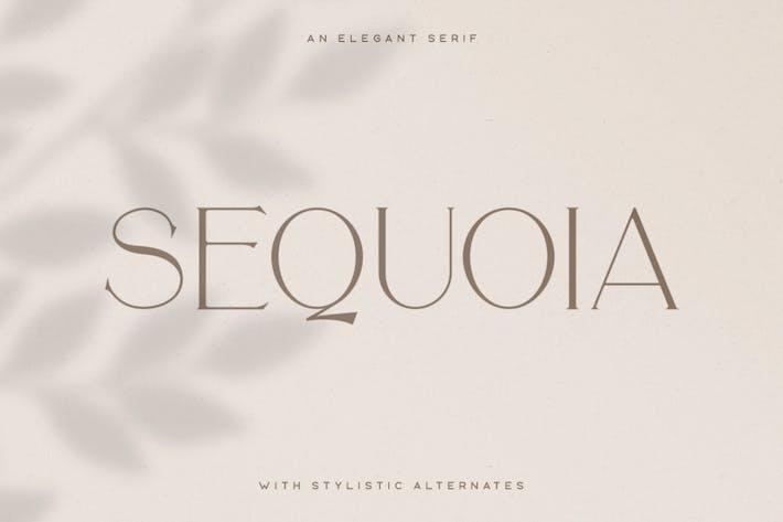 Thumbnail for Sequoia Tipo de letra