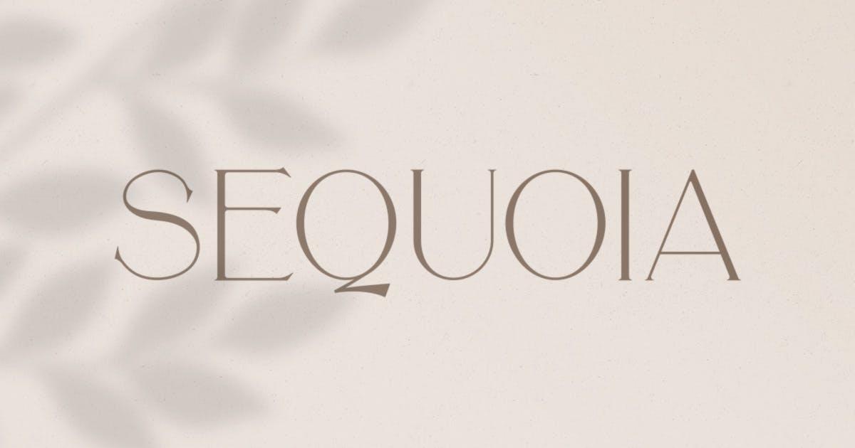 Download Sequoia Typeface by MehmetRehaTugcu