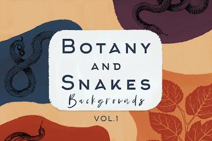 Botanik und Schlangen Hintergründe Vol.1