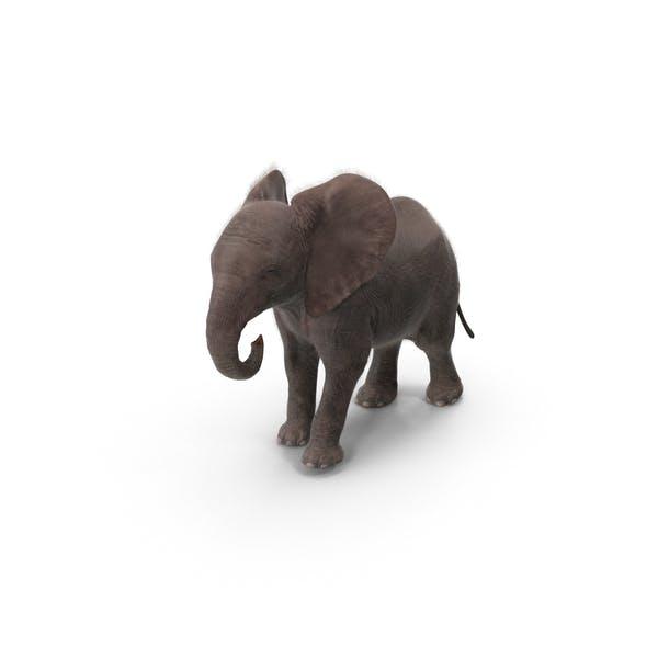 Детский Слон