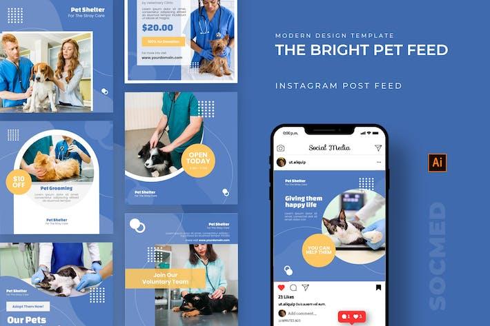 Thumbnail for Bright Pet Shelter Socmed Post