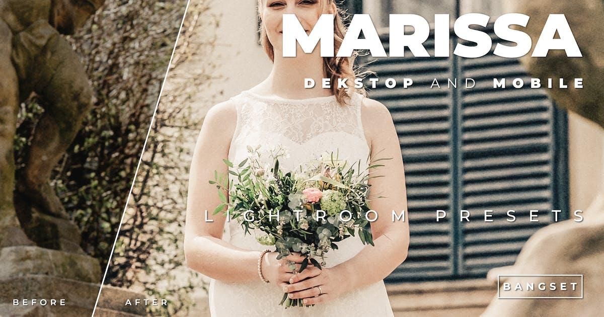 Download Marissa Desktop and Mobile Lightroom Preset by Bangset