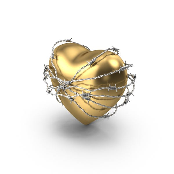 Thumbnail for Golden Heart In Barbed Wire