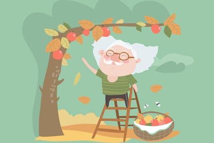 Abuelo recoge la cosecha de manzanas. Vector