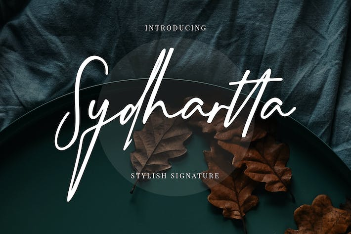 Thumbnail for Sydhartta Stylish Signature