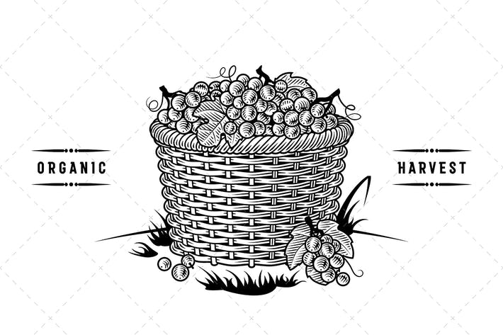 Thumbnail for Retro Basket Of Grapes Black And White