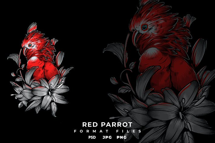 Thumbnail for Red Parrot