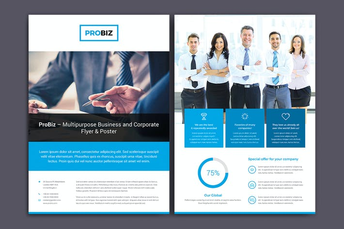 Thumbnail for ProBiz – Flyer Double Sided