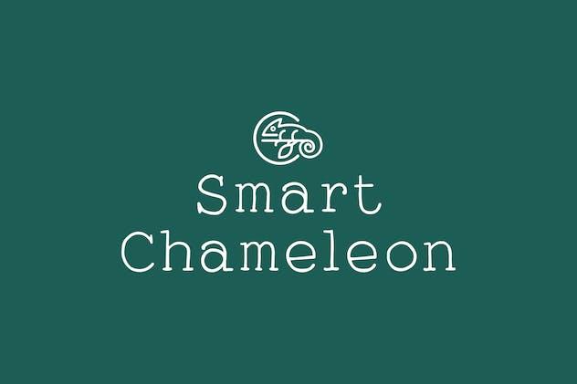 Smart Chameleon