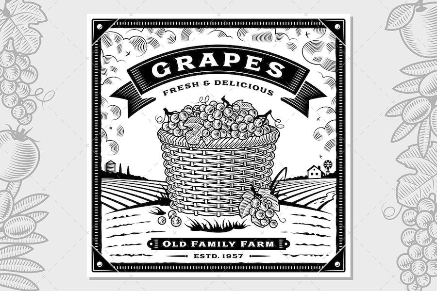 Retro Grapes Harvest Label With Landscape