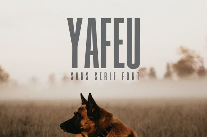 Cover Image For Yafeu Sans Serif Font Family