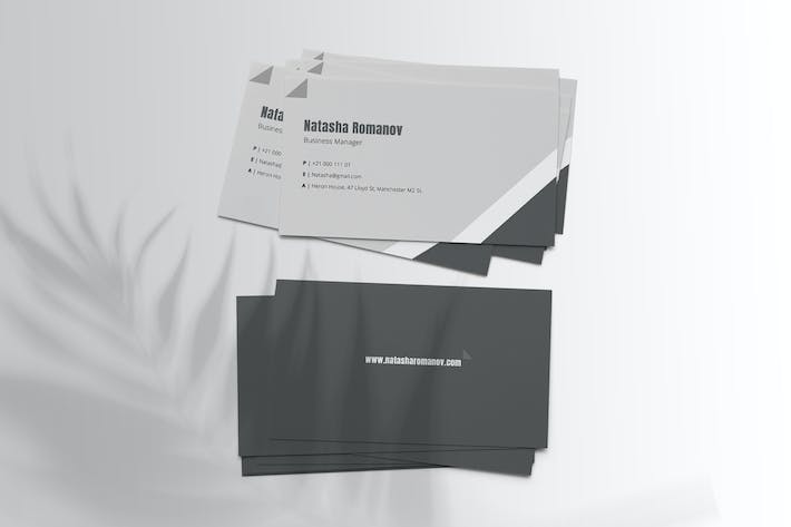 Thumbnail for Corporate Business Card Vol.1