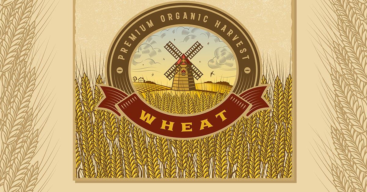 Vintage Colorful Wheat Harvest Label by iatsun