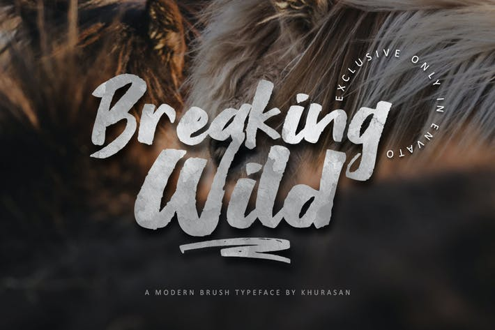 Thumbnail for Breaking Wild Brush Font