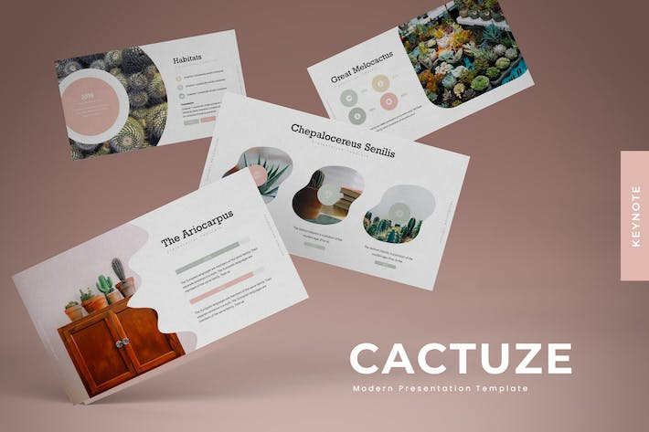 Thumbnail for Cactuze - Powerpoint Template