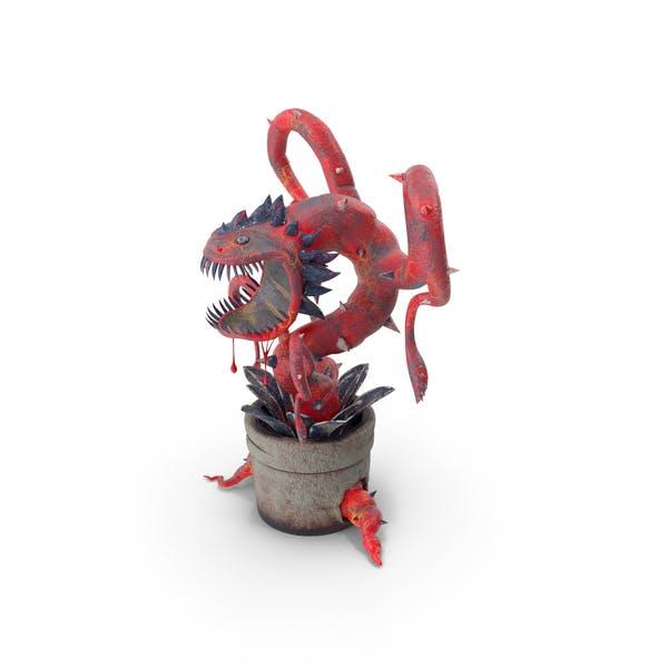 Thumbnail for Carnivorous Flytrap Plant Red