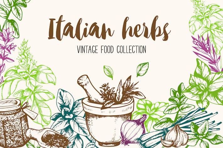 Thumbnail for Vintage Italian Herbs