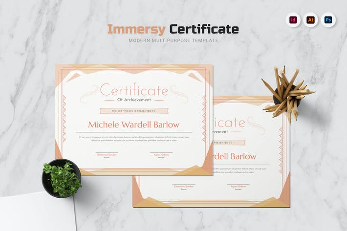 Immersy Certificate