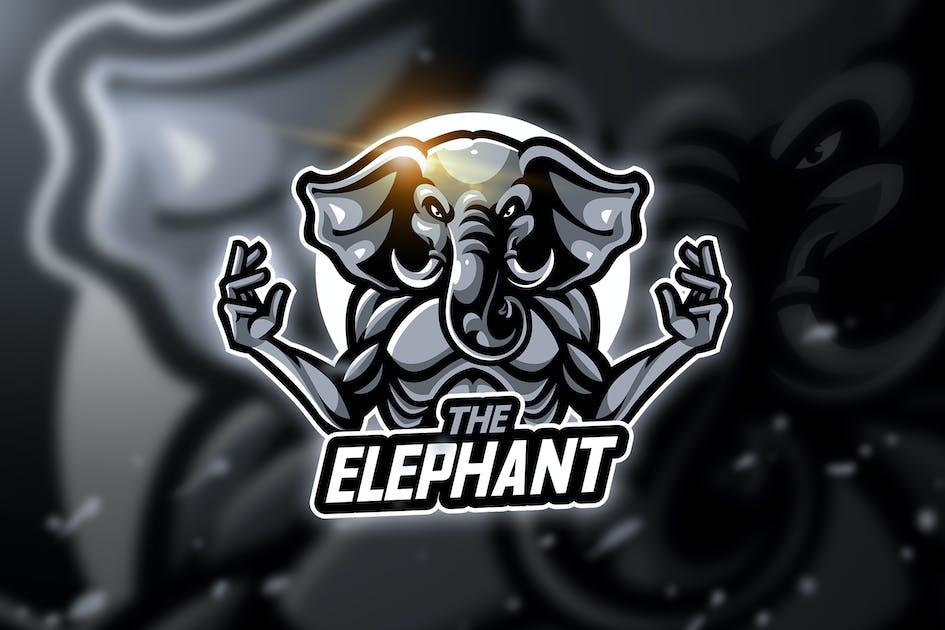 Download Elephant sch - Mascot & Esport Logo by aqrstudio