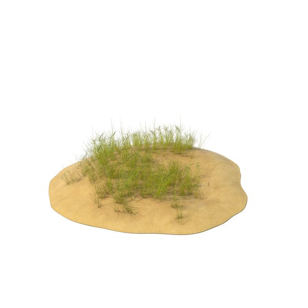 Thumbnail for Sand Dunes with Grass