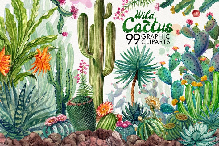 Cover Image For Watercolor Cactuses