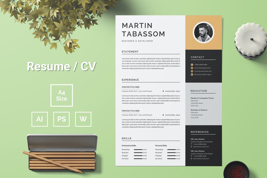 Resume Template 87